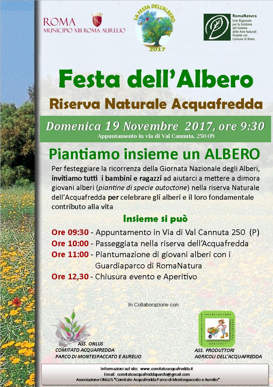 Festa Albero 19 novembre